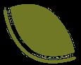 Leaf L