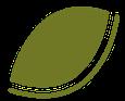 Leaf R