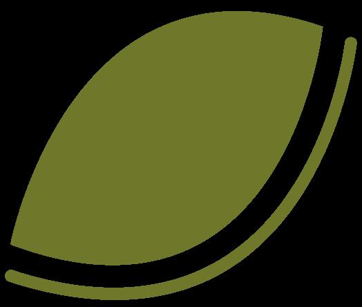 Leaf-R-1.png